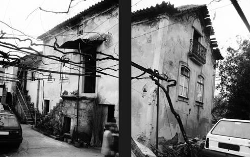 Moradia Castro:   por EVA   evolutionary architecture