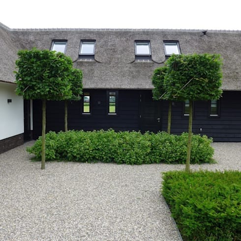 Landelijke Vila : moderne Tuin door Hendriks Hoveniers
