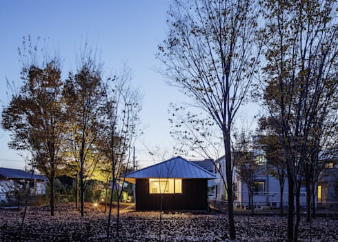 欅林に面する外観(秋): m・style 一級建築士事務所が手掛けた家です。
