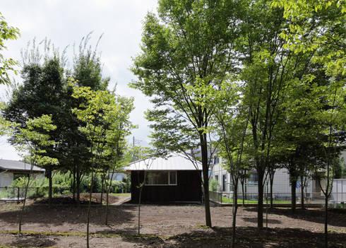欅林に面する外観(初夏): m・style 一級建築士事務所が手掛けた家です。