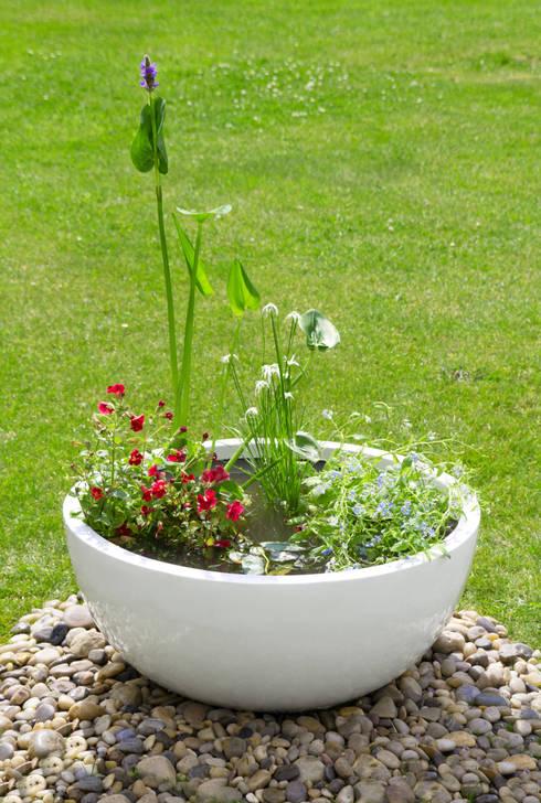 Jardines de estilo  por Primrose