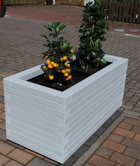 Jardines de estilo  por Designwerkstatt-Kirk