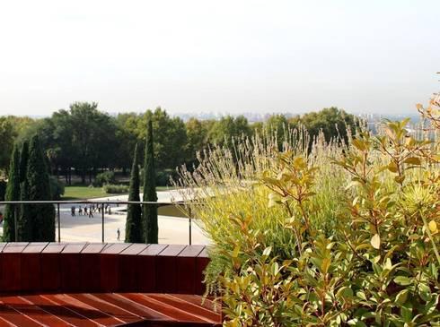 Terraza pequeña en Madrid - Diseño y reforma de terraza de La ...