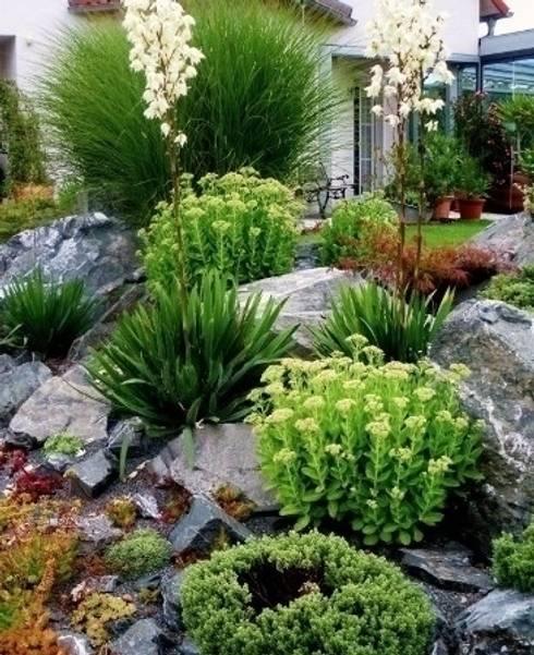 Pflanzung, Findlinge:  Garten von Neues Gartendesign by Wentzel