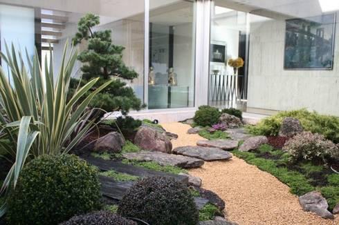 Jardin japones con niwaki de jardines japoneses estudio for Paisajismo jardines modernos