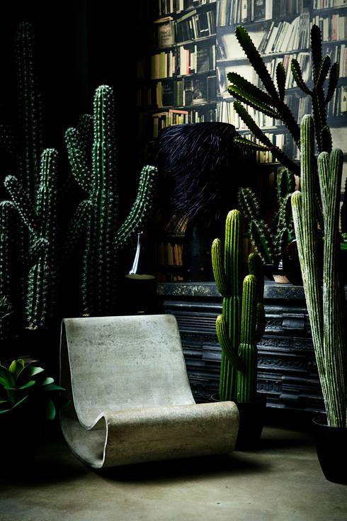 Paisajismo de interiores de estilo  por Abigail Ahern