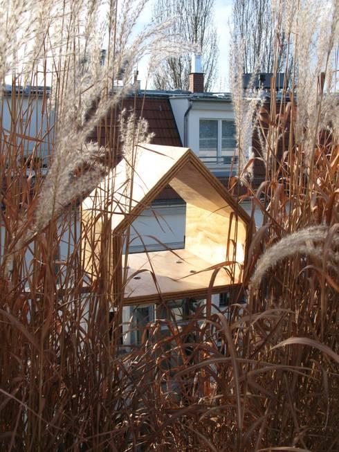 Seekiefer: skandinavischer Balkon, Veranda & Terrasse von homify
