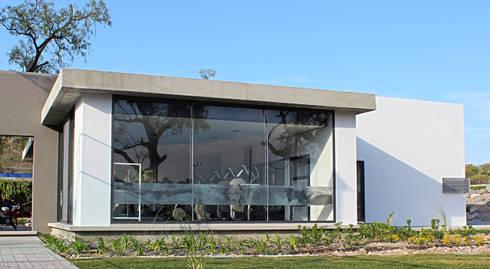 Snack Club Casablanca: Comedores de estilo moderno por VG+VM Arquitectos