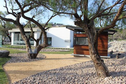 Snack Club Casablanca: Jardines de estilo moderno por VG+VM Arquitectos