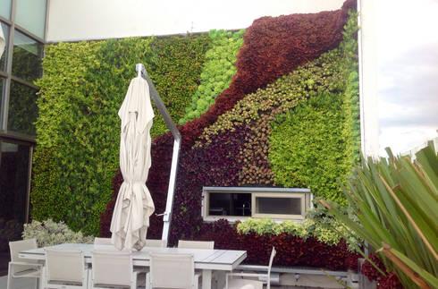Jardín Vertical : Estudios y oficinas de estilo moderno por ENVERDE