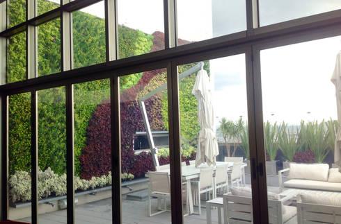 Jardín Vertical : Terrazas de estilo  por ENVERDE