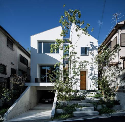 クレバスハウス 外観: 株式会社seki.designが手掛けた家です。