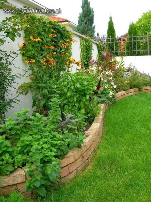 Jardin de style  par Bioarchitektura  - Ogrody, Krajobraz, Zieleń we wnętrzach