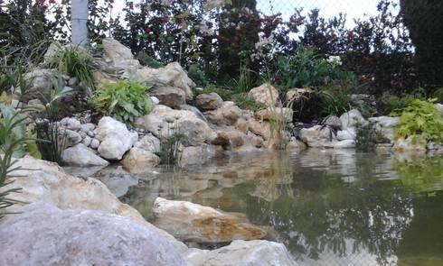 Agua fluyendo:  de estilo  por Acuapaisajes