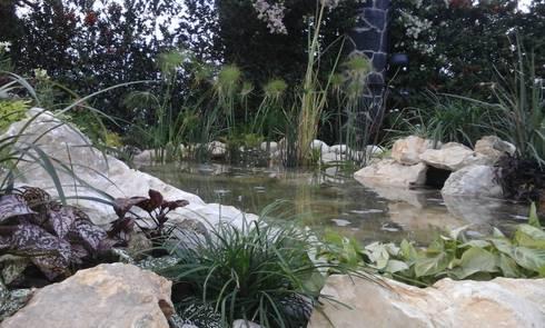 Tierra y agua:  de estilo  por Acuapaisajes