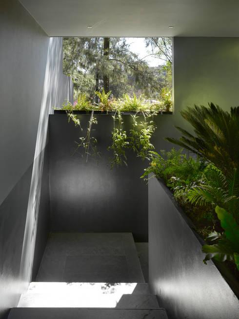 Casa Barrancas: Pasillos y recibidores de estilo  por Ezequiel Farca