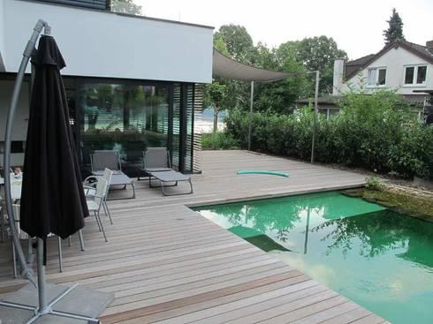 Design bio pool von nagelschmitz garten und for Pool design gmbh