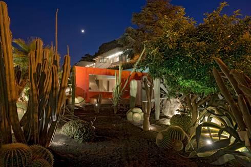 jardin m diterran e jardin mexicain cannes di nazarian espaces verts homify. Black Bedroom Furniture Sets. Home Design Ideas