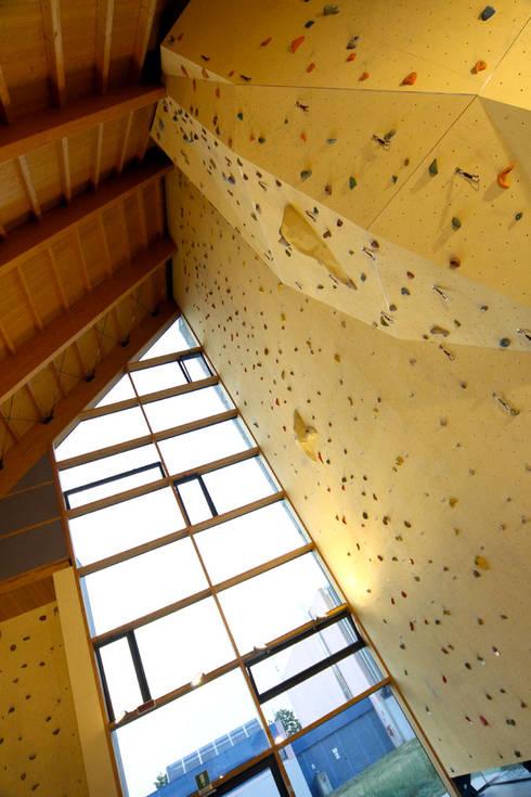 Комната для спорта в . Автор – Andrea Martinelli Architetto