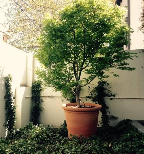 Jardines de estilo clásico por a.s.paisajimo