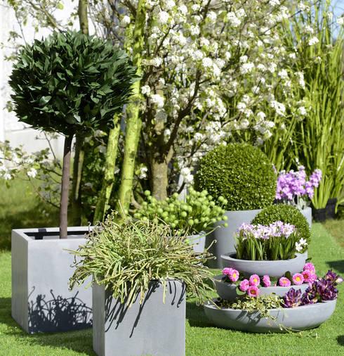 Pimp up your Garden:  Tuin door Groothandel in decoratie en lifestyle artikelen