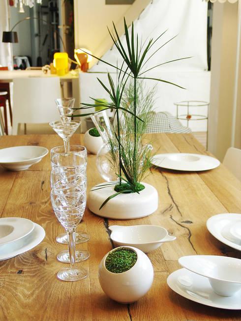 Décoration végétale: Cuisine de style  par Adventive