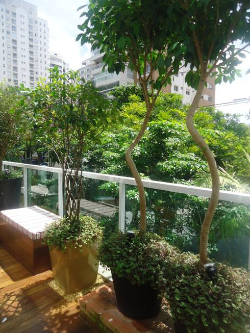 VARANDA VILA NOVA CONCEIÇÃO.SÃO PAULO.BRASIL: Jardins modernos por Línea Paisagismo.Claudia Muñoz