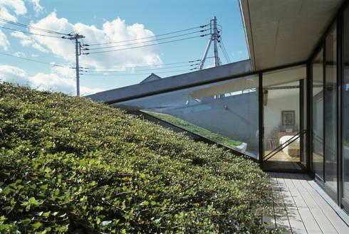 屋上緑化: プライム建築都市研究所が手掛けた庭です。