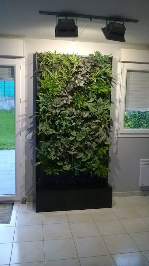 Paisagismo de interior  por Vertical Flore
