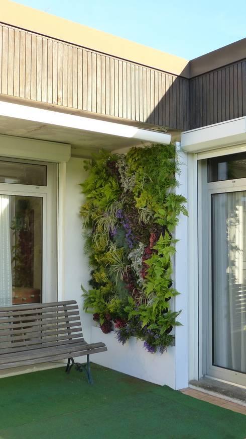 Mur végétal extérieur VERTICAL FLORE: Jardin de style  par Vertical Flore