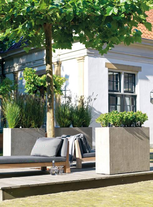 DIVISION Raumteiler: moderner Garten von fleur ami GmbH