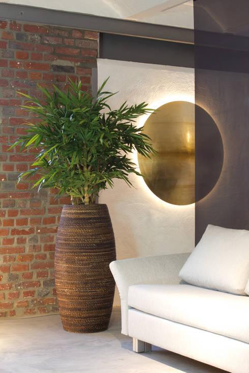 dekorationsmythen was stimmt wirklich. Black Bedroom Furniture Sets. Home Design Ideas