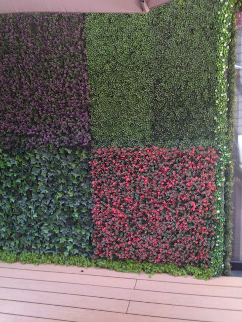 Muros verdes Artificiales Innover: Casas de estilo topical por Grupo Boes
