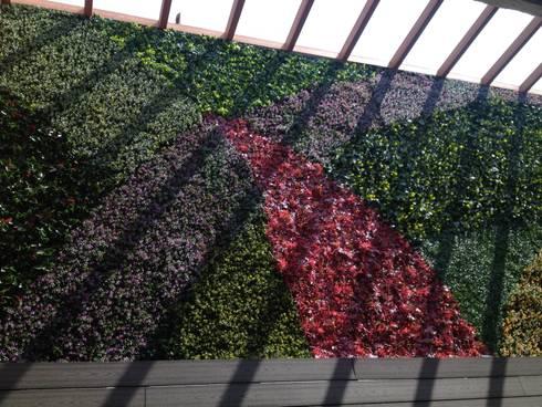 Muros verdes Artificiales Innover: Jardines de estilo topical por Grupo Boes