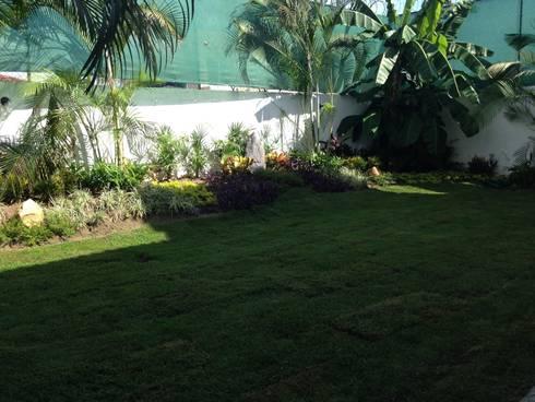 Casa Melchor Ocampo: Jardines de estilo moderno por DECO designers