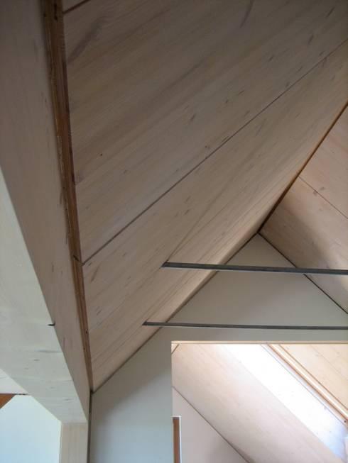 Sägenösch:  Flur & Diele von WERKHAUS Architekten Ingenieure