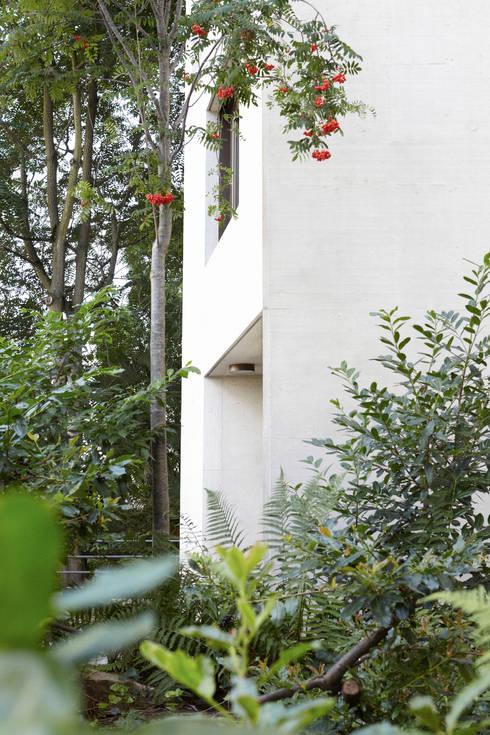 Ersatzneubau MFH Kleiber, Basel:  Häuser von Oliver Brandenberger Architekten BSA SIA