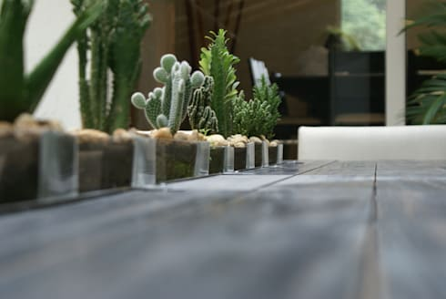 Terraza: Paisajismo de interiores de estilo  por Jacobs Interiorismo