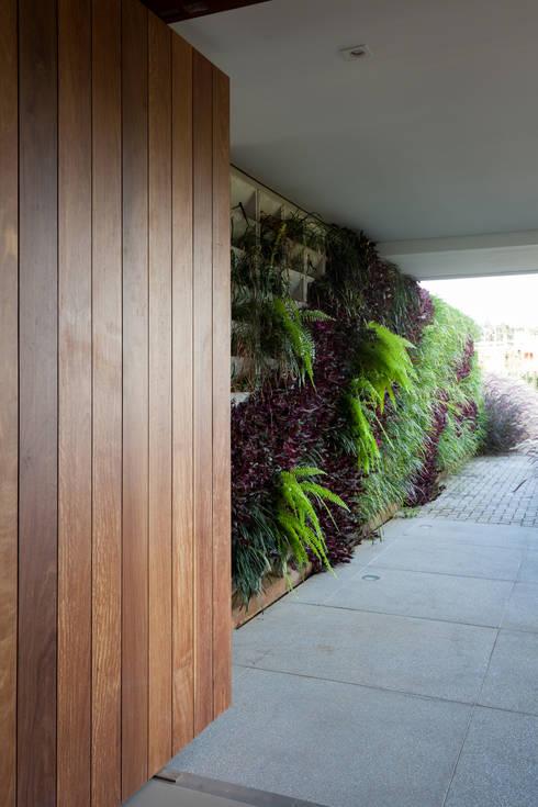 Corridor, hallway by Consuelo Jorge Arquitetos
