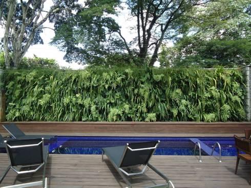 Projetos Diversos: Piscinas tropicais por Quadro Vivo Urban Garden Roof & Vertical
