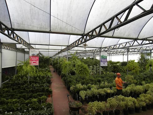 Setor de Plantas Internas: Espaços comerciais  por Blumengarten Plantas e Flores LTDA