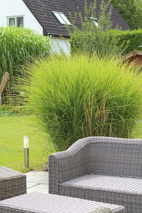 Terrassen:  Garten von grasgrau - GARTENDESIGN