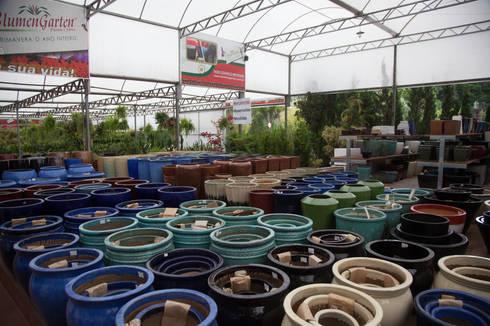 Setor de Vasos Vietnamitas: Espaços comerciais  por Blumengarten Plantas e Flores LTDA