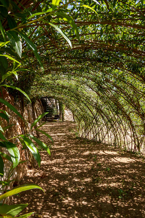 Estructuras de sauce vivo: Jardines de estilo rústico de LANDSHAFT