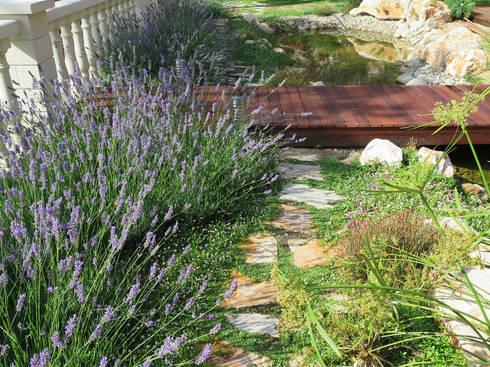 Jardin con cascada de landshaft homify - Losas de jardin ...
