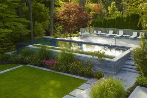 Garten gestaltung von paul marie creation homify for Pool garten gestaltung