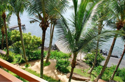 Residência FS - Ilhabela, SP: Jardins tropicais por Gil Fialho Paisagismo