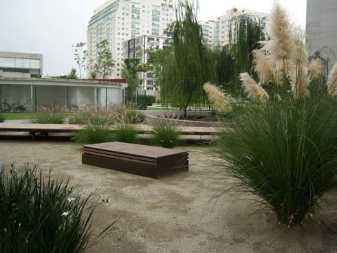 Pennisetums y lirios persas. : Jardines de estilo moderno por KVR Arquitectura de paisaje