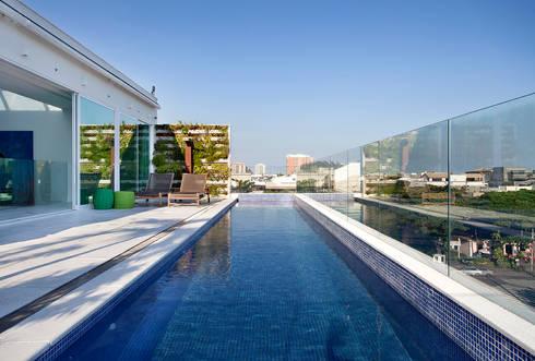 Cobertura Vista, Barra da Tijuca, Rio de Janeiro: Piscinas tropicais por Paula Neder Arquitetos Associados / Studio PN