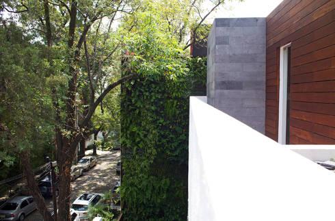 SC-152: Terrazas de estilo  por DF ARQUITECTOS